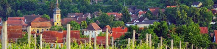Ortsansicht von den Weinbergen